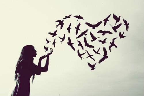 Enquete: Amor e Liberdade